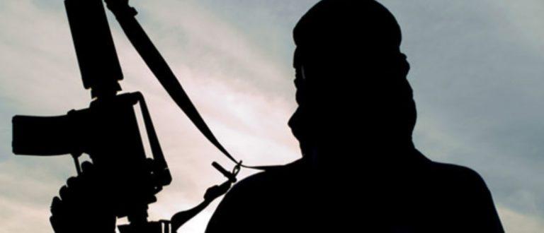 Article : Que nous enseigne le terrorisme?